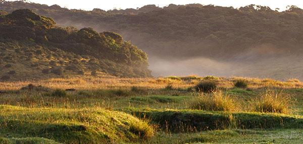 Horton-Plains-Siyathra