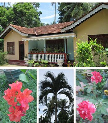 Siyathra-Home-Villa_1