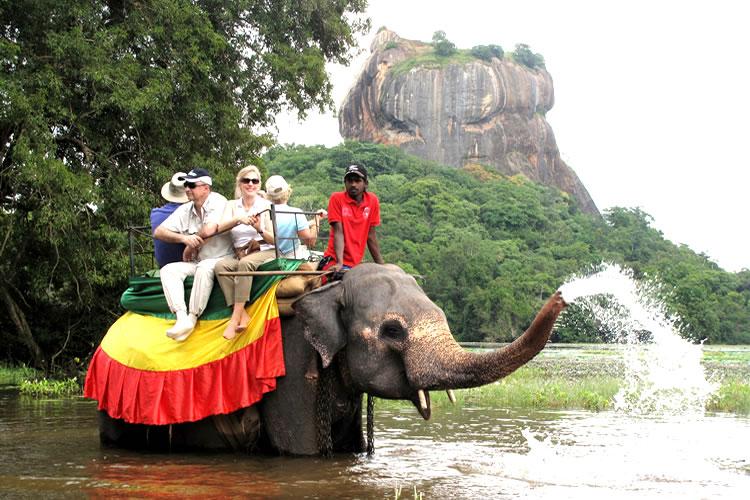 Elephant Riding Safari